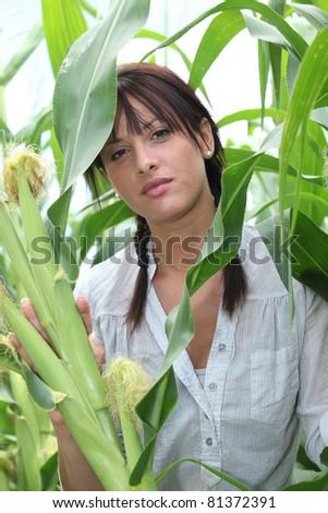 portrait of a woman in corn field - stock photo