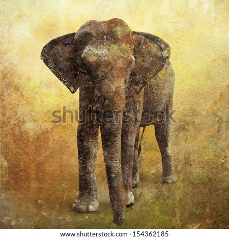 Portrait of an Elephant digital painting with texture - stock photo