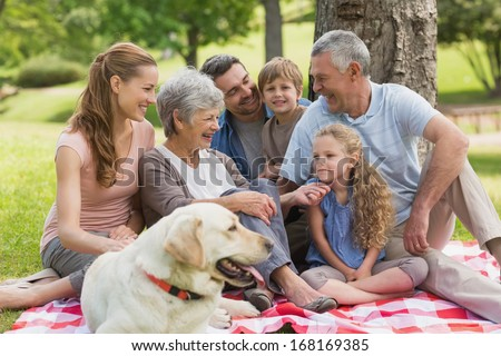 Portrait of an extended family with their pet dog sitting at the park - stock photo