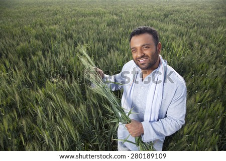 Portrait of an Indian man holding crop plant - stock photo