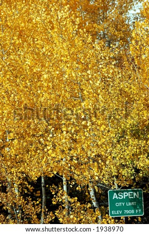 portrait of aspen city limit sign with golden aspen trees filling background - stock photo