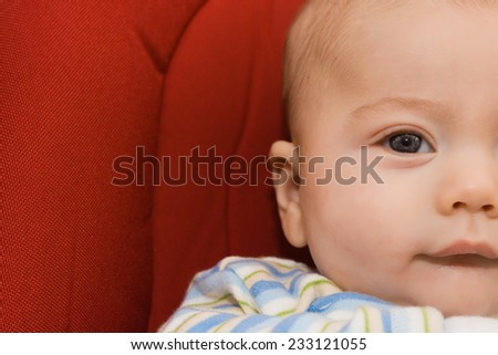 portrait of baby in the hammock - stock photo