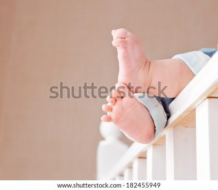 Portrait of baby s feet - stock photo