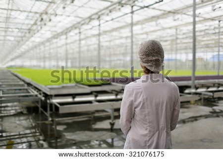 Portrait of back female scientist researching plants and diseases in greenhouse with greenhouse farm - stock photo