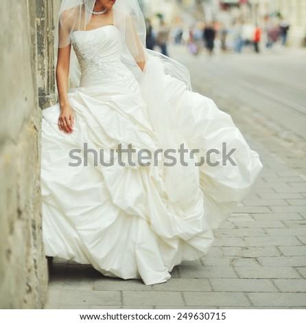 Portrait of beautiful bride wearing wedding dress.  - stock photo