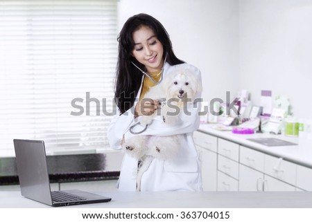 Portrait of beautiful young veterinarian using stethoscope to examine a maltese dog in the clinic - stock photo