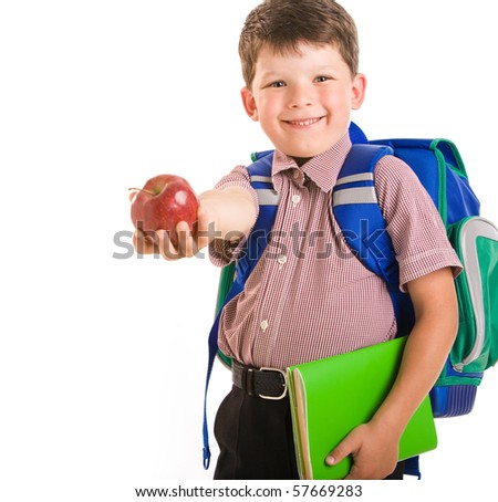 Portrait of clever schoolchild isolated on a white background - stock photo