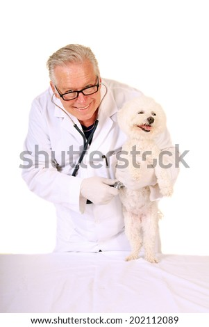 Portrait of confident and handsome male veterinarian examining a happy dog with his stethoscope. Isolated on white with room for your text