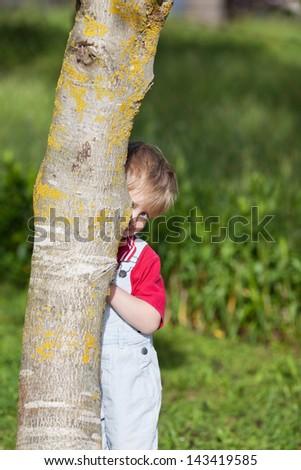Portrait of cute boy hiding behind tree trunk in yard - stock photo