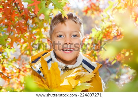Portrait of cute boy with autumn leaves in the beautiful park - stock photo