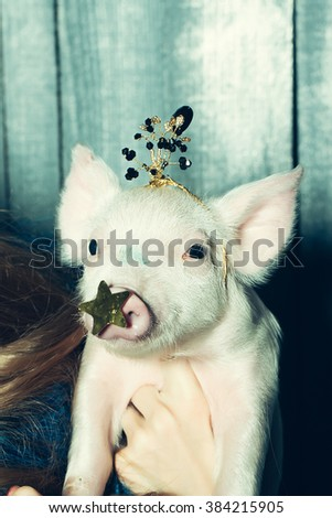Portrait of cute funny fashionable glamour pink small princess piglet in queen crown indoor in studio on wooden background, vertical picture