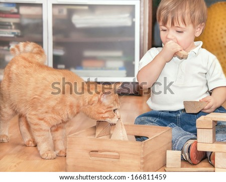 Portrait of cute happy caucasian boy and red kitten. Little positive boy sitting and playing on the floor in the room with wooden cubes and domestic animal. Indoor, clouse up. - stock photo