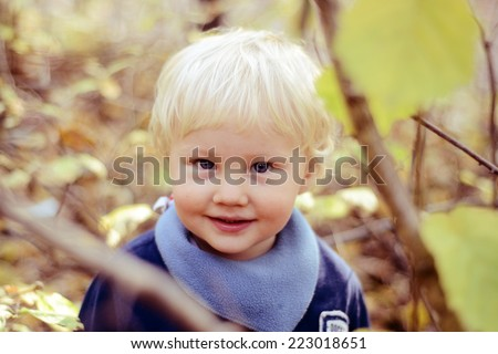 Portrait of cute  little boy in autumn  - stock photo