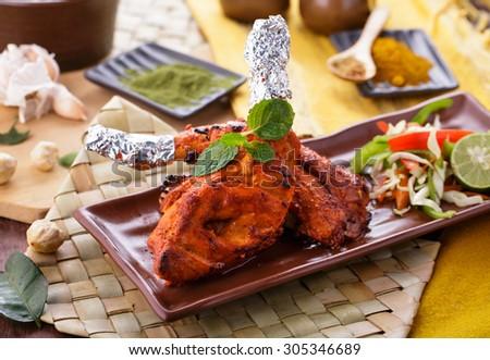 portrait of delicious indian tandoori chicken - stock photo