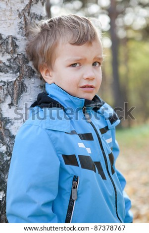 Portrait of  disaffected small boy, fall, park
