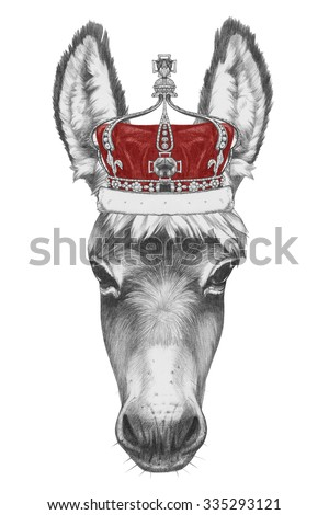 stock-photo-portrait-of-donkey-with-crow