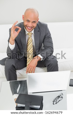 Portrait of elegant young businessman gesturing okay sign with laptop on sofa at home