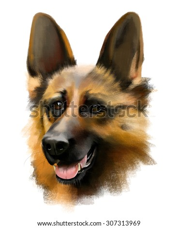 portrait of German shepherd dog isolated on a white background, watercolor illustration - stock photo