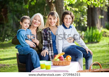 Portrait of happy multi generation family enjoying picnic at park - stock photo