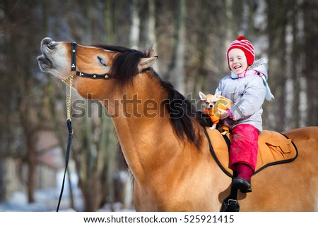 Portrait of horse, dog and child. Smiling horse, dog and child. Horse riding in winter.