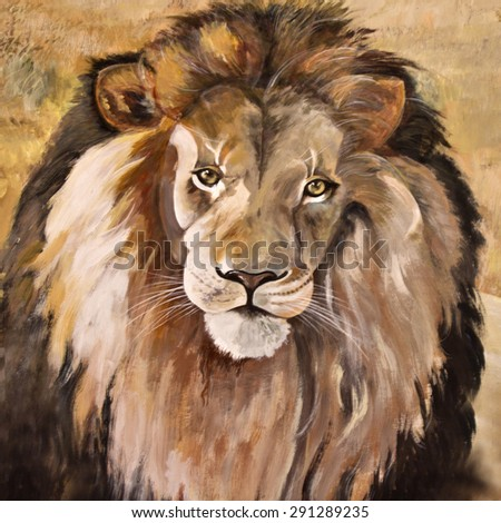 Portrait of huge beautiful male African lion - stock photo