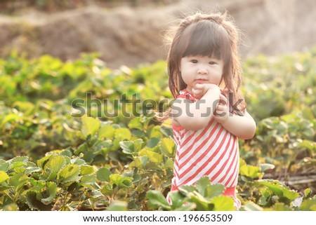 Portrait of  little girl in summer day - stock photo