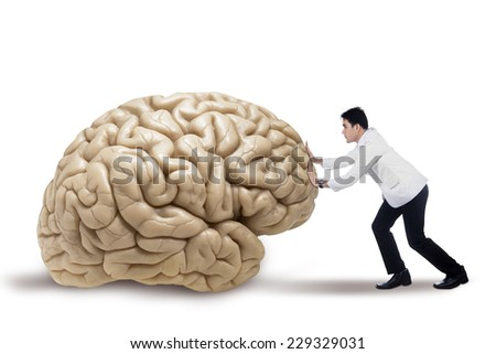 Portrait of male doctor pushing a brain, isolated on white background - stock photo
