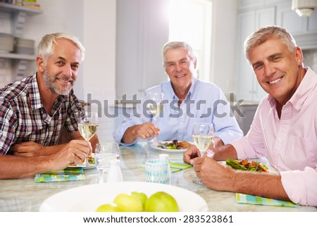 Portrait Of Mature Male Friends Enjoying Meal At Home - stock photo