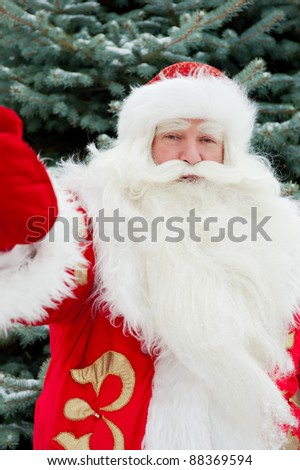 Portrait of natural Santa Claus standing at Christmas Tree outdoors in winter and welcoming you with open hands