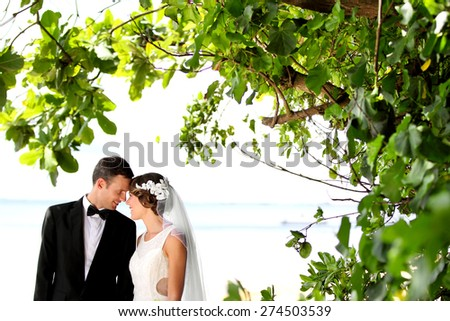 portrait of romantic newlywed couple cuddling under the tree with copy space - stock photo