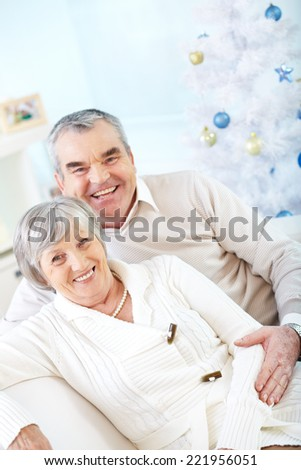 Portrait of senior couple at home at Christmas - stock photo