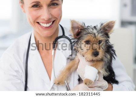 Portrait of smiling female vet holding puppy with bandage on leg in clinic - stock photo