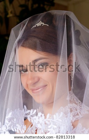 Portrait of the beautiful bride under a veil