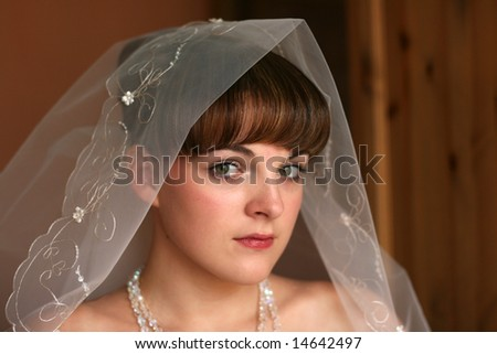 Portrait of the bride in a veil before wedding
