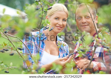 Portrait of two farmers in currant bush - stock photo