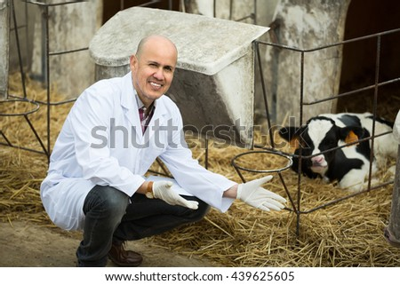 Portrait of veterinary technician with new born calf in farm - stock photo