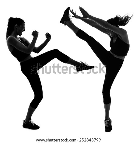 Portrait of woman doing martial arts kicking the air - stock photo