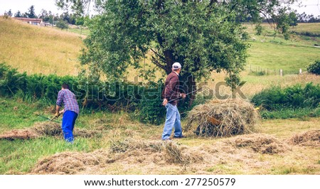 Portrait of young and senior man working hard raking dry hay on a field - stock photo
