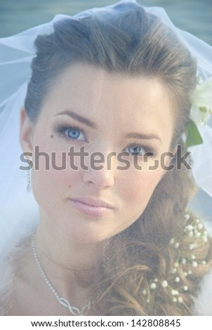 Portrait of Young Bride Wearing Wedding Dress