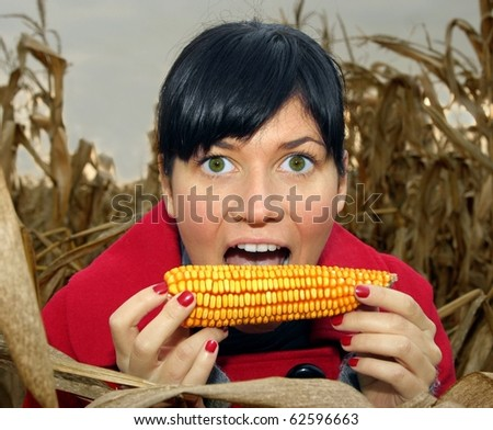 Portrait of young cute woman eating a corn.Field background. Focus on the model. - stock photo