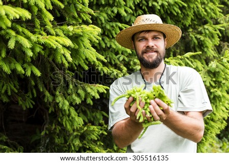 Portrait of young man holding  fir buds in his hands in the mountain woods - stock photo