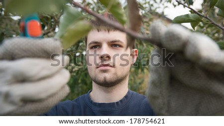 Portrait of young man pruning branch - stock photo