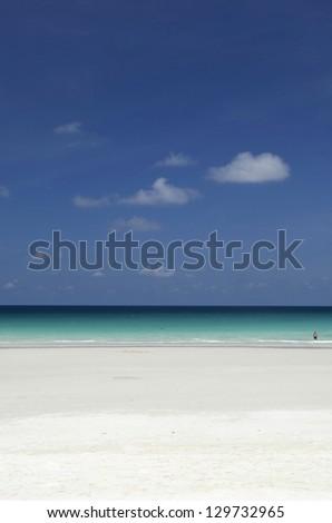 Portrait view landscape of beach scenery - stock photo