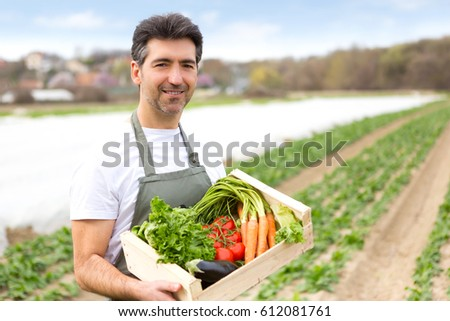 Portrait view of an attractive middle aged farmer harvesting vegetables in a field - Nature concept