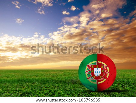 Portugal a soccer  ball in European cup