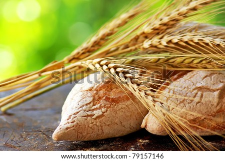 Portuguese bread and mature spikes of wheat. - stock photo