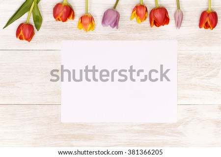 Post blog social media 8 march. View from above with copy space. Banner template layout mockup for woman day. Tulips with 8 march International womans day on sheet of paper on wooden background - stock photo