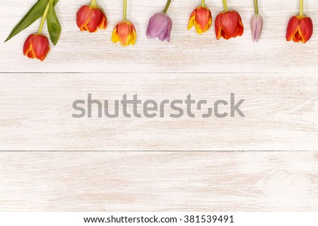 Post blog social media 8 march. View from above with copy space. Banner template layout mockup for woman day. White wooden table, top view on workplace. Tulips on white table. - stock photo