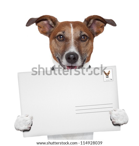 post envelope mail stamp dog with letter - stock photo
