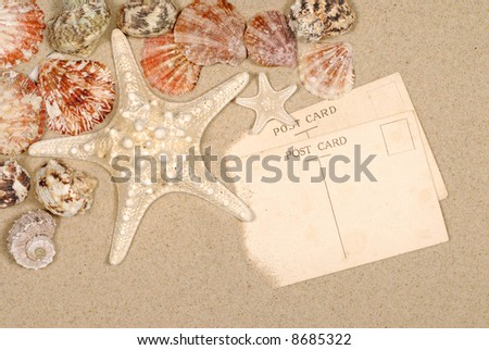 Postcard, beach background, starfish, travel concept, copy space.